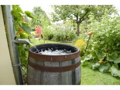 Regenwasser sammeln & sinnvoll nutzen